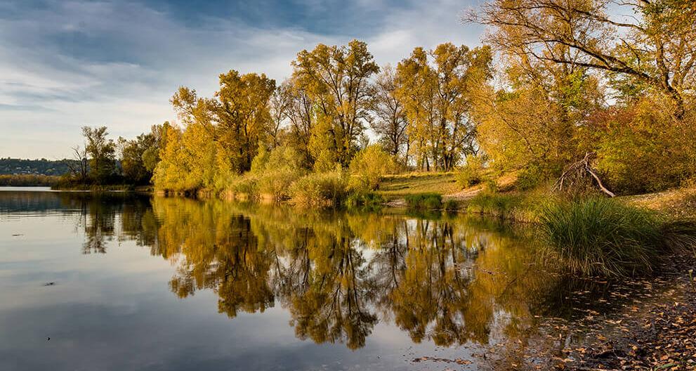 Grand parc de Miribel-Jonage